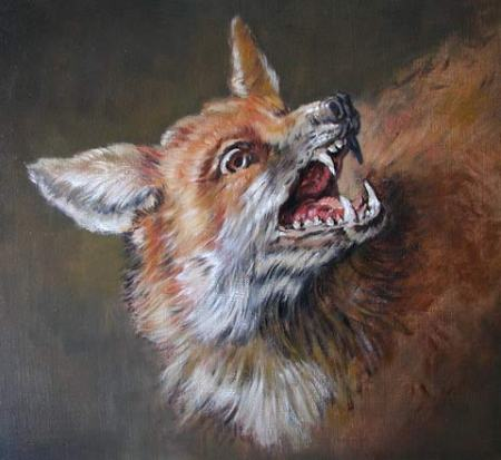 luce_fox